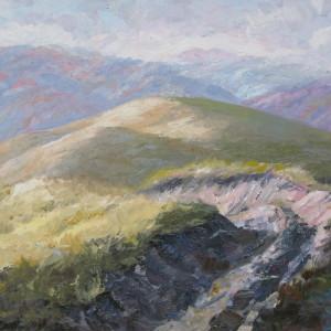 картина лисої гори в місті Рахові навесні
