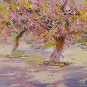 pink cherry trees blossoming painting