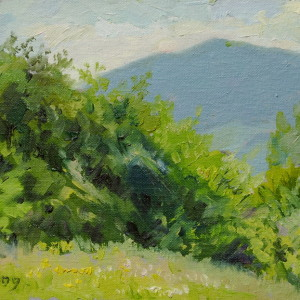 tiny canvas art of a carpathian landscape