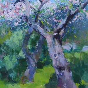 картина дерев яблуні в цвітіння