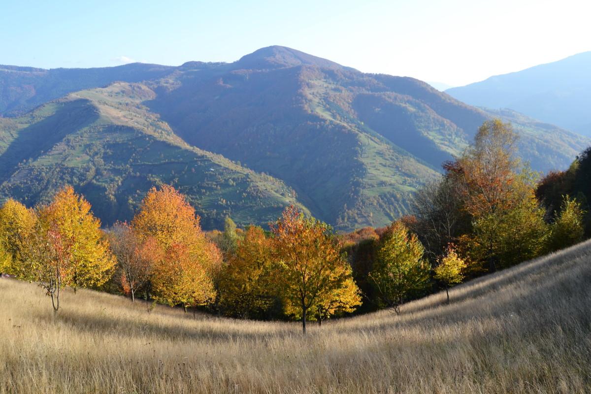 осінь в карпатах