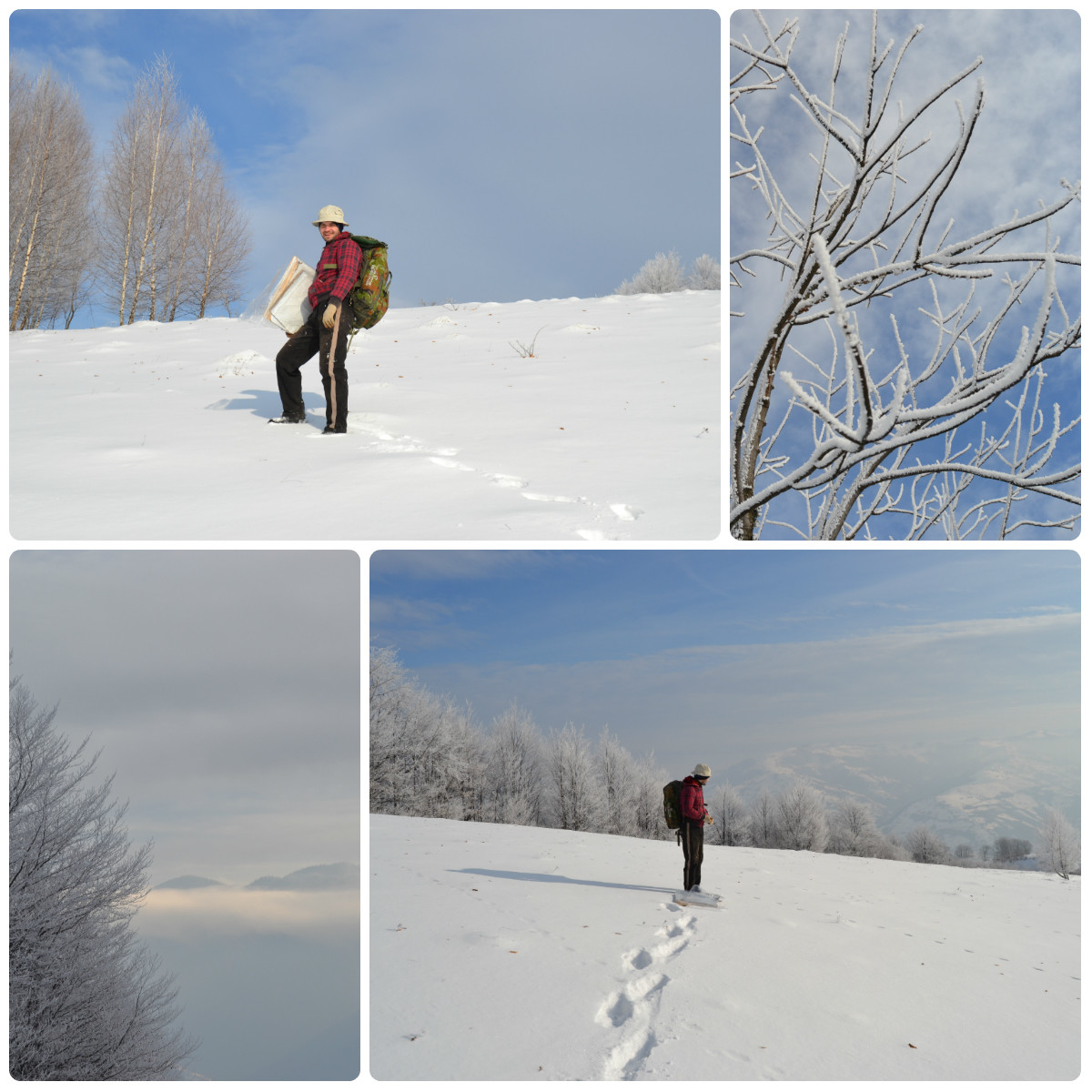 beautiful winter landscapes in carpathians