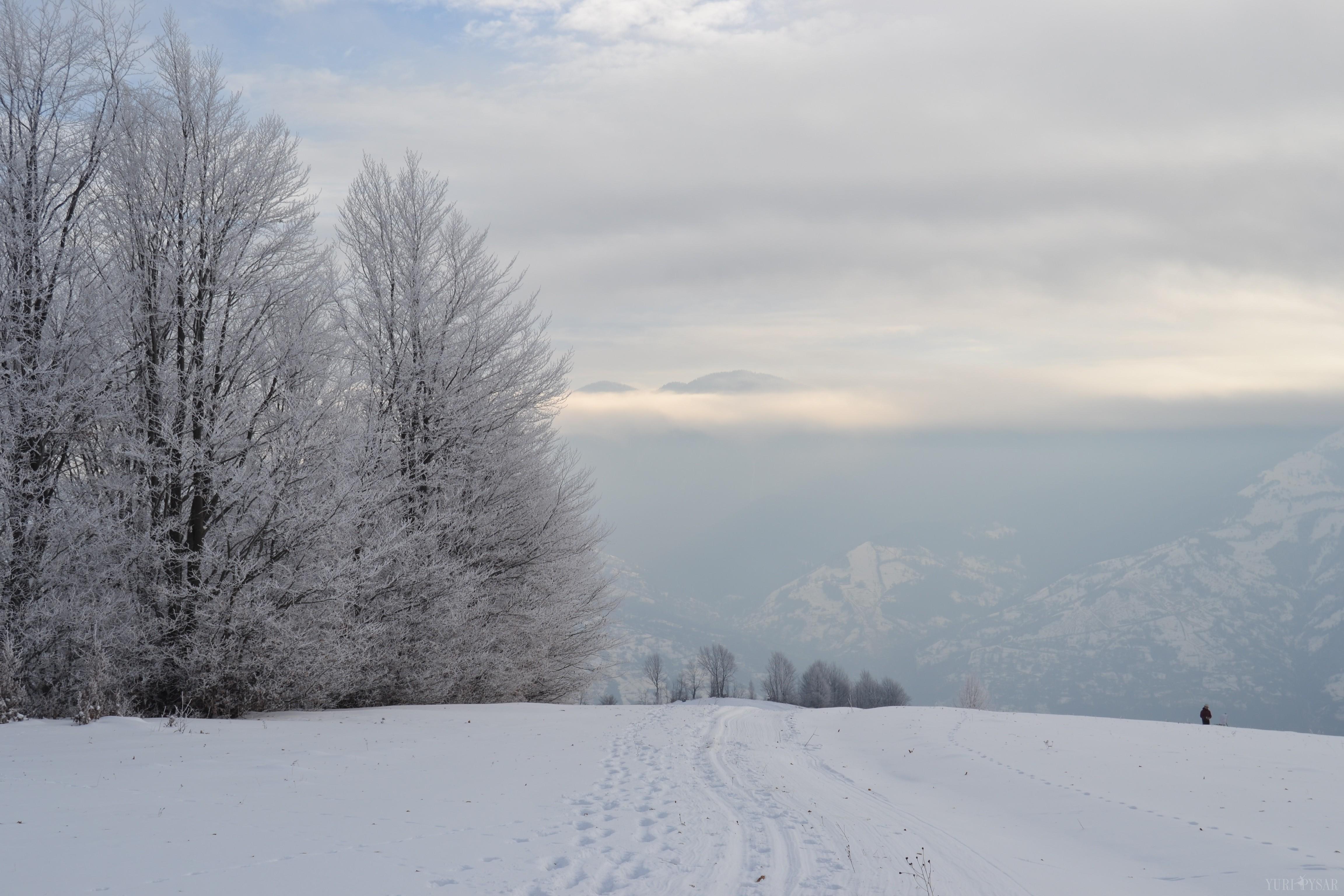 carpathians wearing snow in January 2015