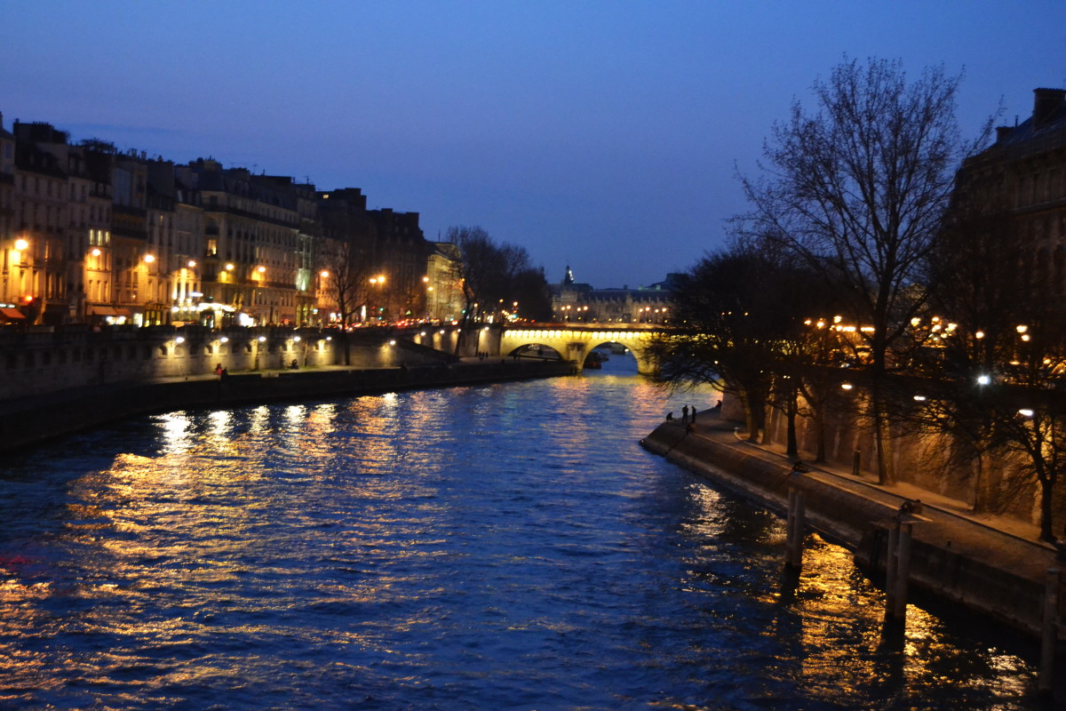 bridges across Seine and their lights on water
