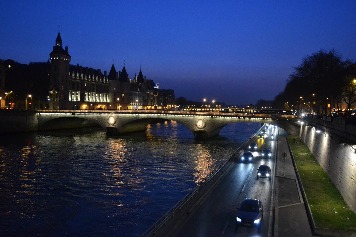 parisian bridges by night are even more interesting